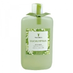 Eucalyptus Shower Gel by Thymes